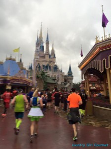 Walt Disney World Marathon Recap 2016